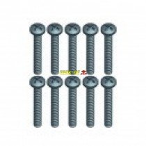 BT 3*22L screw 10pcs